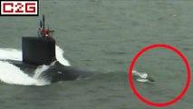Des dauphins saluent un sous-marin nucléaire