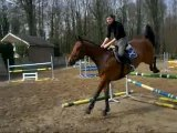 JUMPING CHEVAUX