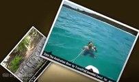 """""""Moreton Island"""" Raoul_far_aus's photos around Moreton Island, Australia (moreton island camping)"""