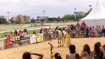 Spectacle en duo, Salon du cheval de Toulouse 2014