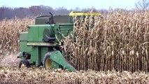 1978 John Deere 6600 Combine Corn Harvesting