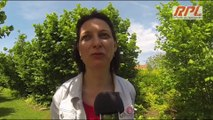 Laquenexy Ahmed DJOGHLAF aux Jardins Fruitiers