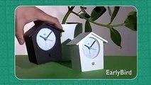 Reloj Despertador con Trinos reales de Aves Cantoras - KooKoo Earlybird