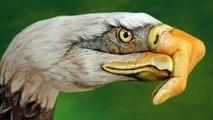 The Eagles - Tequila Sunrise-HD