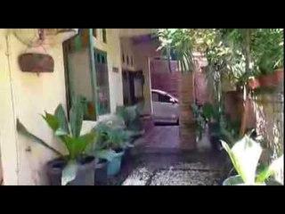 Rumah Mungil: Kampung Si Kolektor