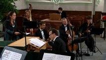 J.S. Bach - Cantata BWV 89 - Was soll ich aus dir machen, Ephraim - Aria (J. S. Bach Foundation)