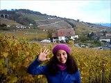 Saludo al Huerto del Pozo desde Suiza