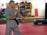 Shaolin vs. Tai Chi/Kung Fu Master