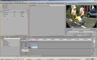 Premiere Pro Tutorial - Fisheye Lens Look