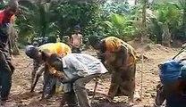 Biochar au Congo - contre la déforestation, la pauvreté et le changement climatique