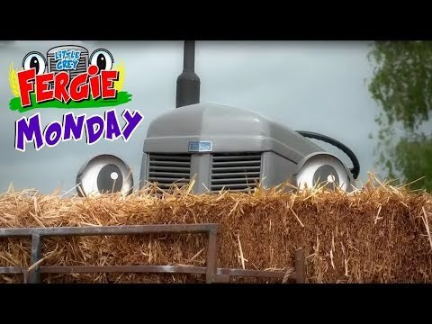 Monday with Fergie | Little Grey Fergie | ZeeKay Junior