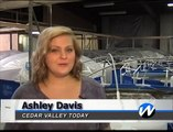 Shrimp Farm comes to Cedar Valley