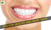 Tips For Healthy And White Teeth | Best Health Tips | Educational Videos