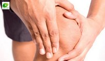 Tips for Joint Pain | Best Health Tips | Educational Videos