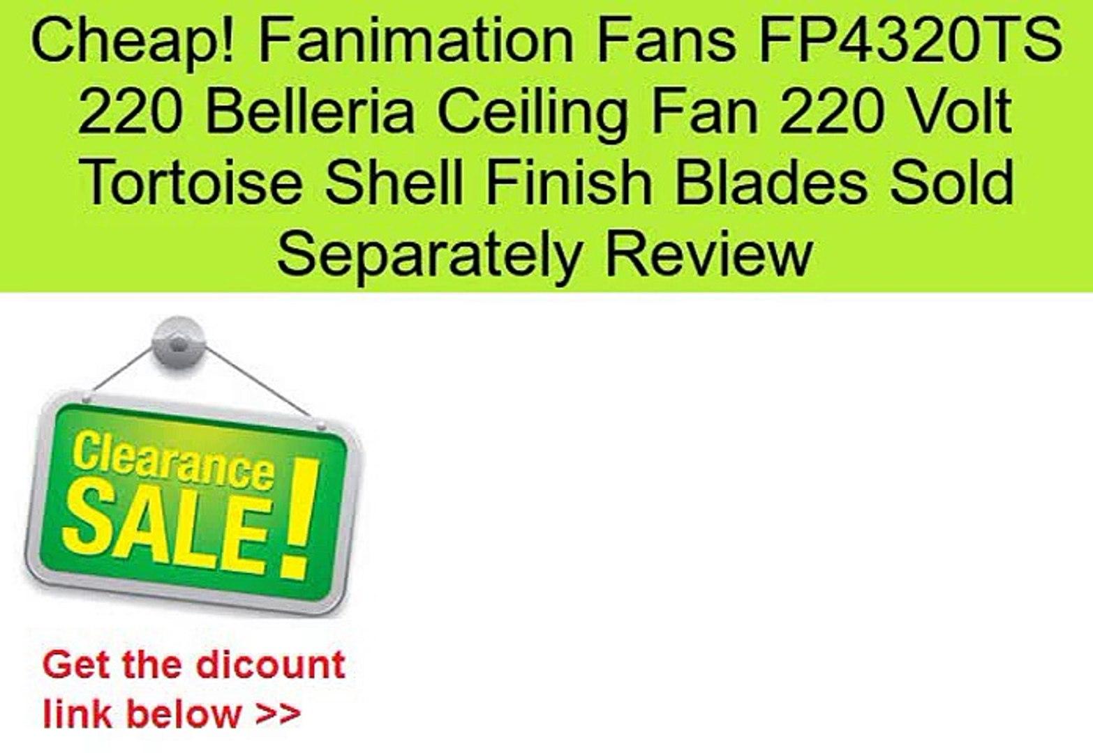 Fanimation Fans FP4320TS 220 Belleria Ceiling Fan 220 Volt Tortoise Shell Finish Blades Sold Separat