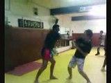 Arts martiaux cascades