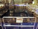 Arnie Gundersen, Nuclear Expert, Analyzes Current Fukushima Daiichi Situation & Japanese Govt Plan