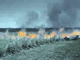 Setting a Grass Fire