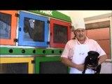Come cucinare il tuo cane /  how to coock a dog