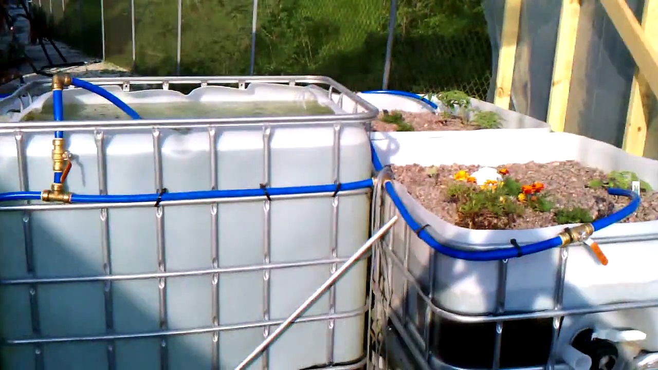 Aquaponics – 4 raised growbed system