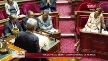 Fin de vie au Sénat : compte rendu de séance