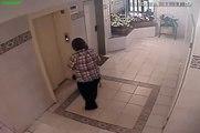 Chien VS  ascenseur, un Carlin évite la mort de justesse