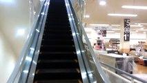 HAPPY ESCALATOR MONDAY! ニトリ八王子店フジテックエスカレーター FUJITEC Escalators/l'escalator(動画)