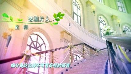 閃亮茗天 第53集 Tea Love Ep53