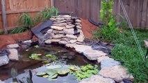 Steve's garden pond up date.  Garden Pond water fall