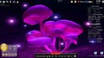 Linux + KDE + beryl + Steam + Counter Strike Source