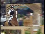 Horses-Jumping and Dressage