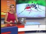 Ministra de Salud señala que existen  más de 50 mil contagiados con dengue y chikungunya