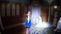 Carson at the Anna and Elsa Meet and Greet in Princess Fairy Tale Hall Magic Kingdom