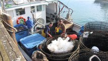 California Fisheries Fund: Ensuring the sustainability and profitability of West Coast Fisheries