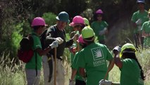 Volunteers Restore San Gabriel Mountains Trail for National Get Outdoors Day | Edison International