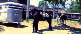 El Komander - Ranchero y Gallardo ♞ [Video Oficial] [2012] [HD]