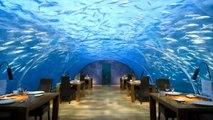 RESTAURANTE SUBMARINO EN ARRECIFE DE CORAL. Maldivas. Los restaurantes mas raros del mundo