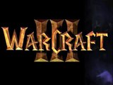 Warcraft III Frozen Throne & Dark Avenger