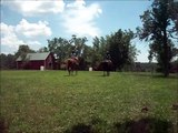 Summer Time Horse Back Riding at D.R. Taks Farm