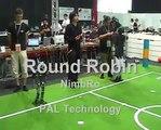 RoboCup 2006 Humanoid Team NimbRo Foot Race