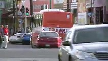 Notivisa - Piden regulación transportistas