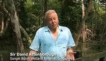 Wildlife Asia Sir David Attenborough Endorsement