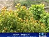 Report World Water Day Neelum Valley ,Muzaffarabad azad Kashmir By Amiruddin Mughal