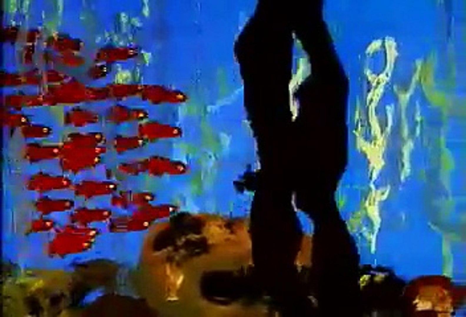 Swimmy - the little black fish (animation)