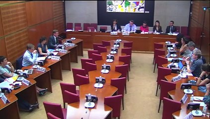Age du numérique : Audition du Conseil national du numérique à l'assemblée nationale