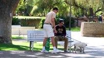EPIC DOG NAPPER PRANK!! 2015 Best VIDEOS ever! #216 (VIRAL SECTION)
