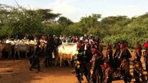 Lower Omo Valley : Bull-Jumping Ceremony Of The Hamer Tribe in Turmi