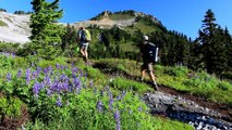 Garibaldi Provincial Park - Hiking Elfin Lakes & Little Diamond Head