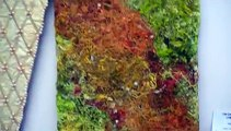Victoria College of Art 'Narrative Articulations' Fine Art Textile Exhibition
