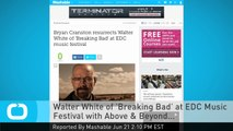 Walter White of 'Breaking Bad' at EDC Music Festival With Above & Beyond...